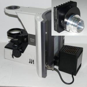 Nikon Eclipse 80i-pip